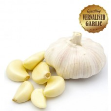 Vernalised Garlic - Australian White 60mm Plus Bulb Diameter - 1KG