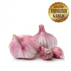 Vernalised Garlic - Australian Red 25mm - 40mm Bulb Diameter - 1KG